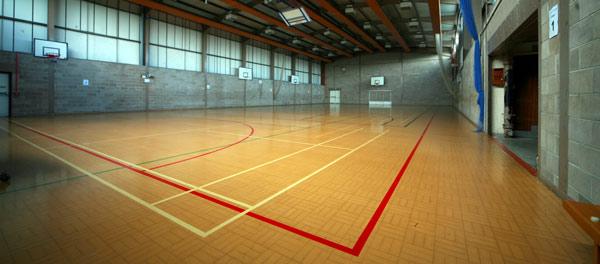 Venue Balsall Common Badminton Club
